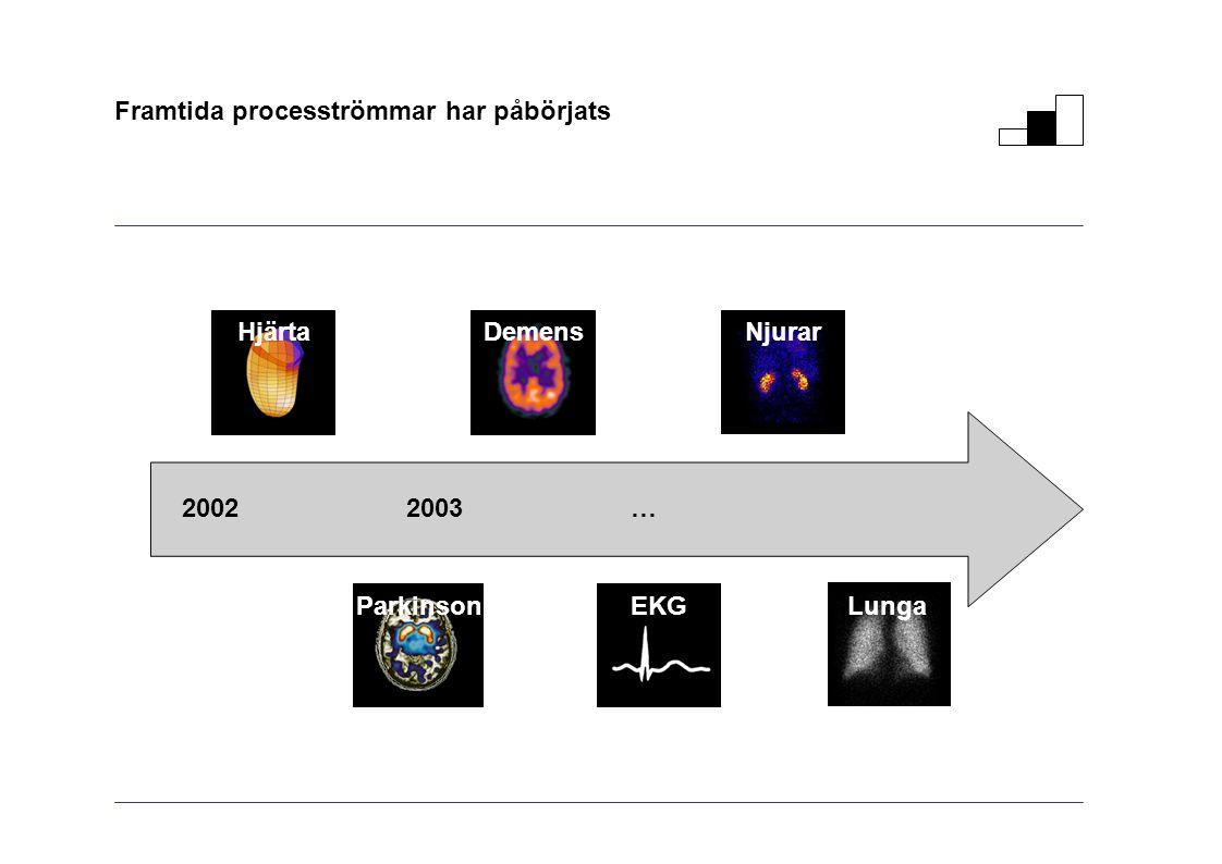 Framtida procesströmmar har påbörjats 20022003… Njurar Demens Hjärta Lunga ParkinsonEKG