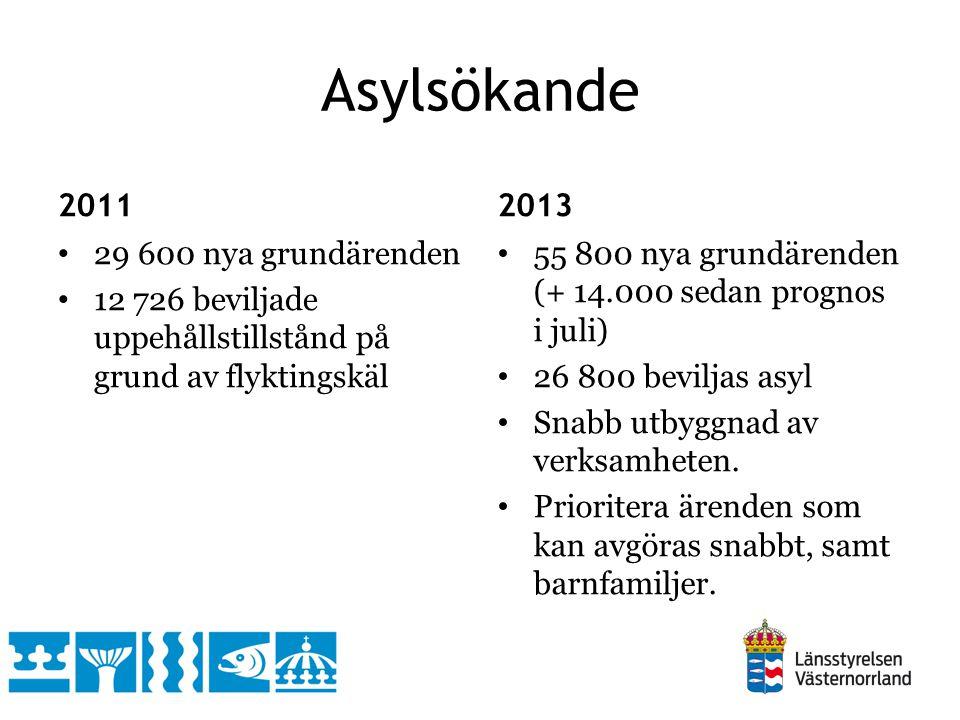 Asylsökande 2011 29 600 nya grundärenden 12 726 beviljade uppehållstillstånd på grund av flyktingskäl 2013 55 800 nya grundärenden (+ 14.000 sedan prognos i juli) 26 800 beviljas asyl Snabb utbyggnad av verksamheten.