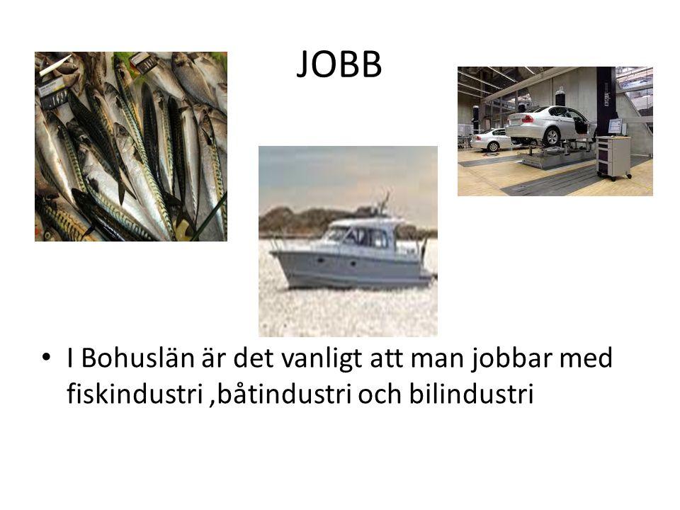 JOBB I Bohuslän är det vanligt att man jobbar med fiskindustri,båtindustri och bilindustri