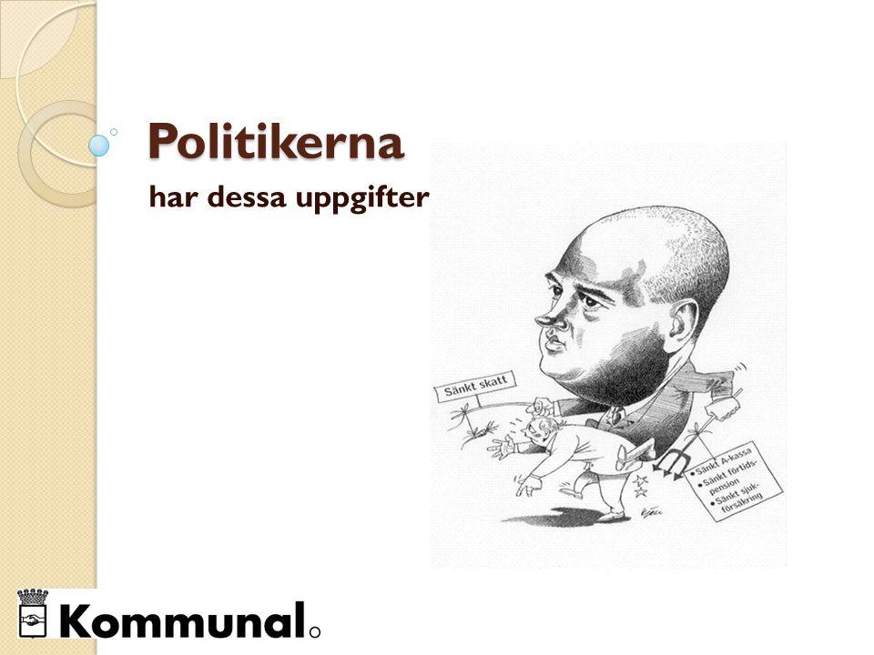 Politikerna har dessa uppgifter