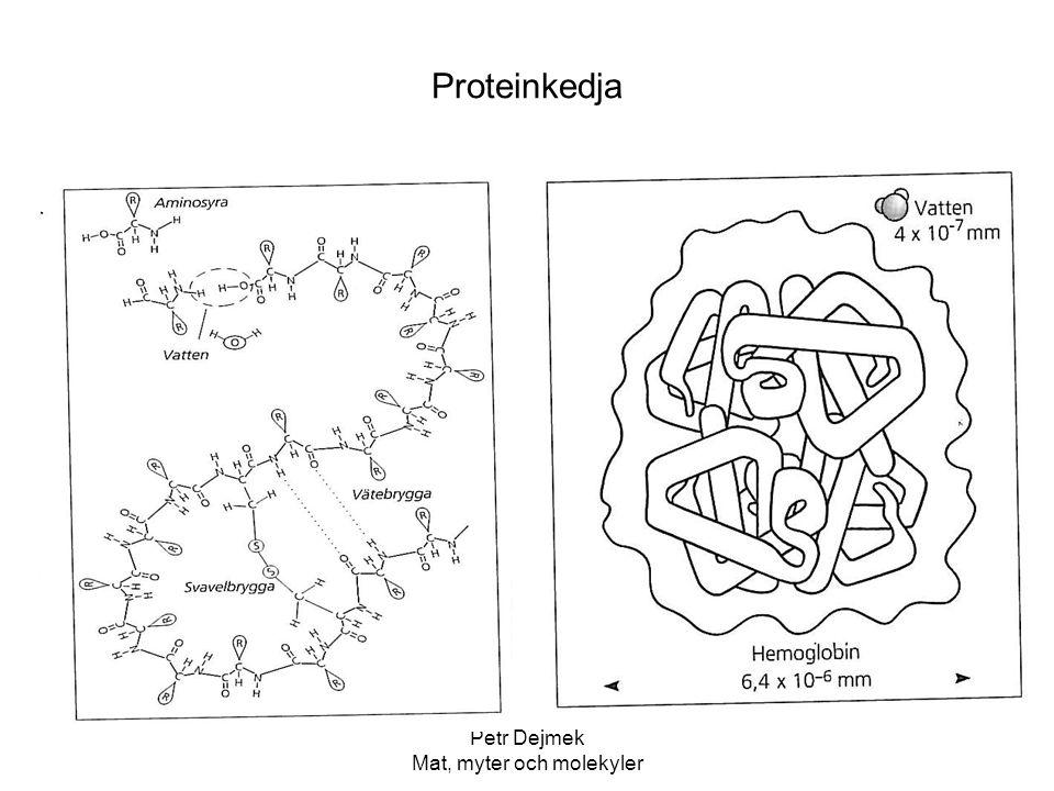 Petr Dejmek Mat, myter och molekyler Proteinkedja