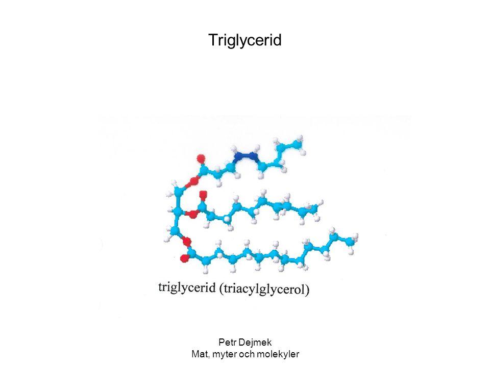 Petr Dejmek Mat, myter och molekyler Triglycerid