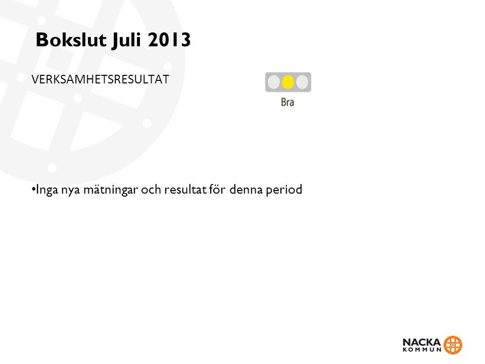Bokslut Juli 2013 VERKSAMHETSRESULTAT Inga nya mätningar och resultat för denna period