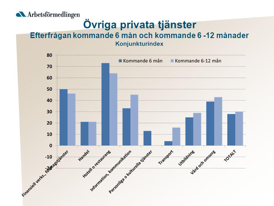 Övriga privata tjänster Efterfrågan kommande 6 mån och kommande 6 -12 månader Konjunkturindex