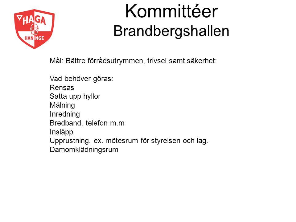 Kommittéer Brandbergshallen Mål: Bättre förrådsutrymmen, trivsel samt säkerhet: Vad behöver göras: Rensas Sätta upp hyllor Målning Inredning Bredband,