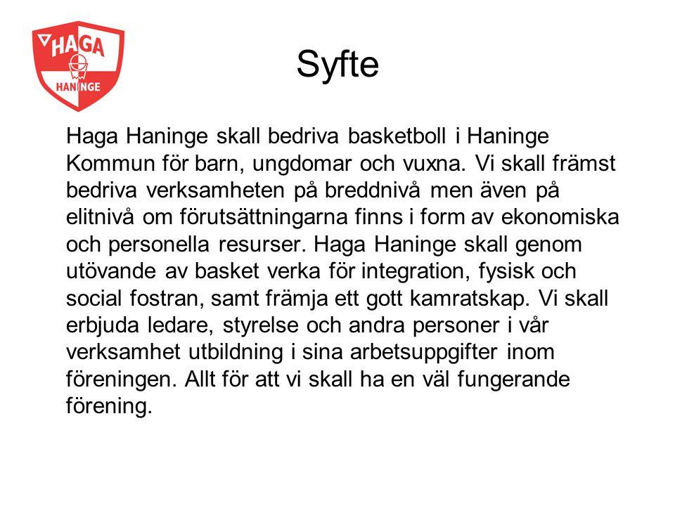 Syfte Haga Haninge skall bedriva basketboll i Haninge Kommun för barn, ungdomar och vuxna. Vi skall främst bedriva verksamheten på breddnivå men även