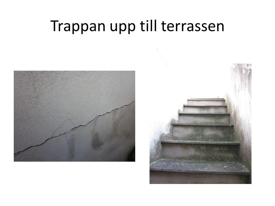 Trappan upp till terrassen