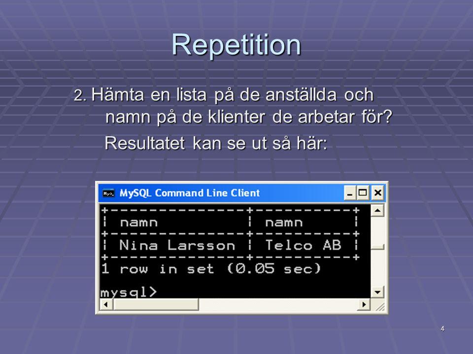 5 Repetition 3.Vilka programmerare har haft externa uppdrag.