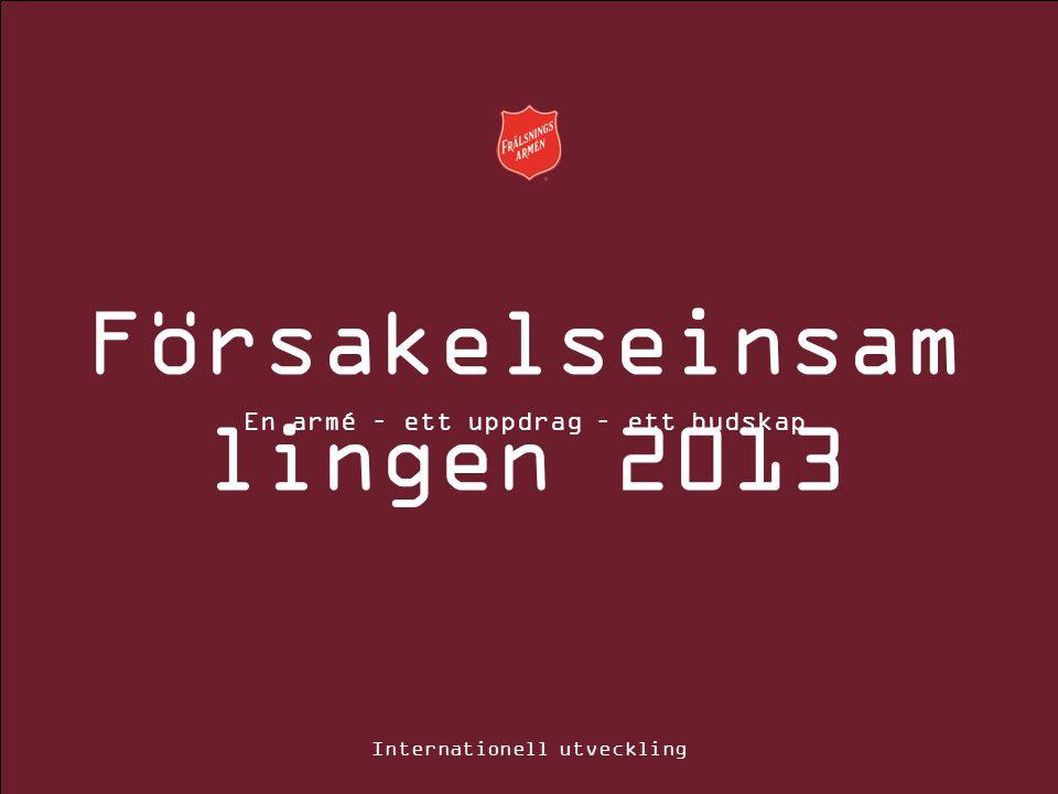 Försakelseinsam lingen 2013 En armé – ett uppdrag – ett budskap Internationell utveckling