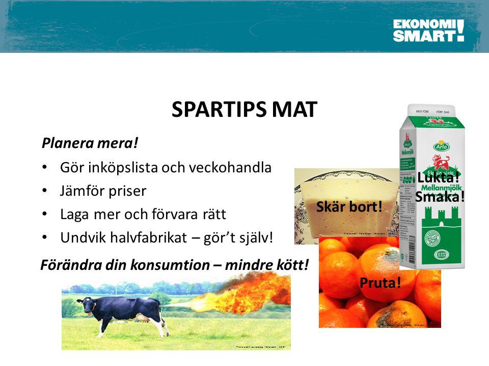SPARTIPS MAT Förändra din konsumtion – mindre kött! Skär bort! Pruta! Lukta! Smaka! Planera mera! Gör inköpslista och veckohandla Jämför priser Laga m