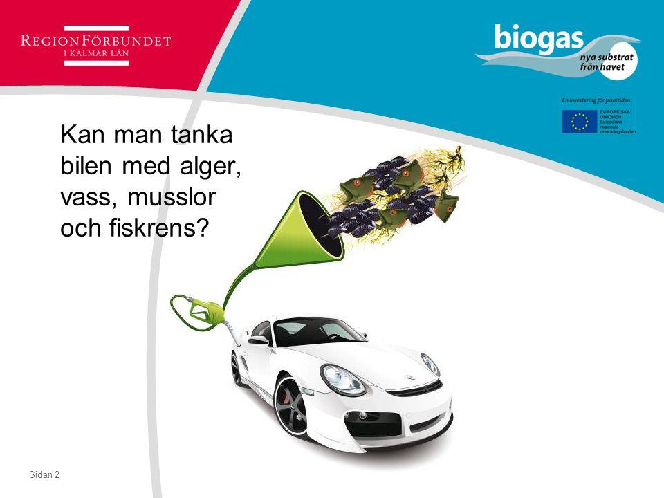 Sidan 2 Kan man tanka bilen med alger, vass, musslor och fiskrens?