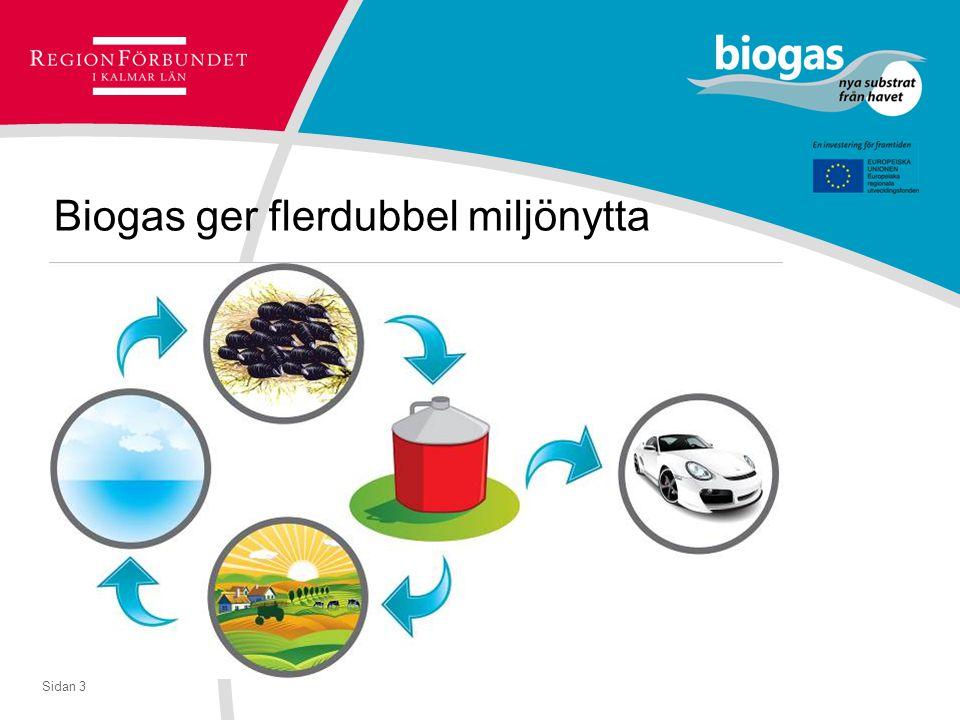 Sidan 3 Biogas ger flerdubbel miljönytta