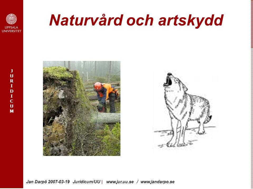 JURIDICUMJURIDICUM Jan Darpö 2007-03-19 Juridicum/UU   www.jur.uu.se / www.jandarpo.se Naturvård och artskydd