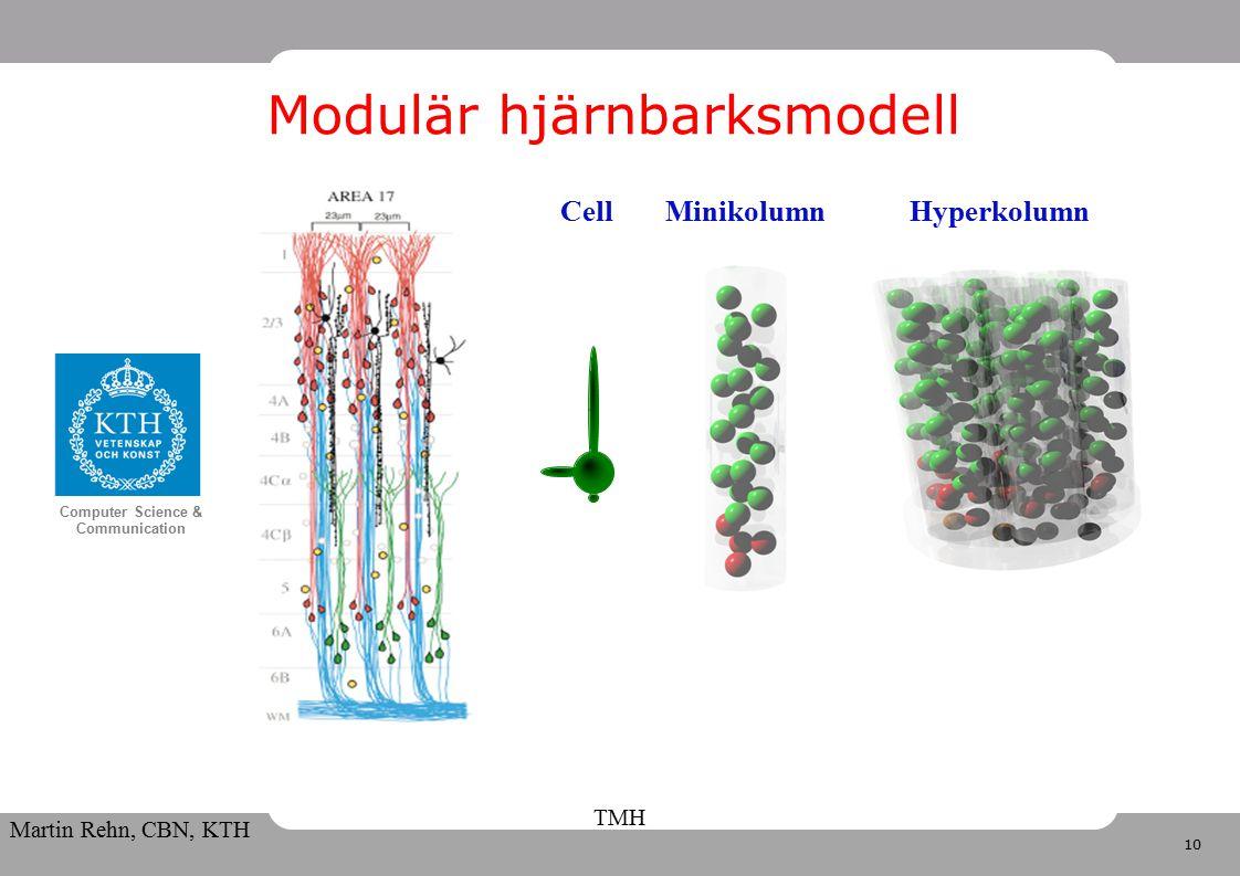 10 Computer Science & Communication Martin Rehn, CBN, KTH TMH Modulär hjärnbarksmodell MinikolumnHyperkolumnCell