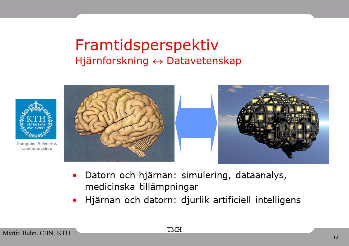 13 Computer Science & Communication Martin Rehn, CBN, KTH TMH Framtidsperspektiv Hjärnforskning  Datavetenskap Datorn och hjärnan: simulering, dataanalys, medicinska tillämpningar Hjärnan och datorn: djurlik artificiell intelligens