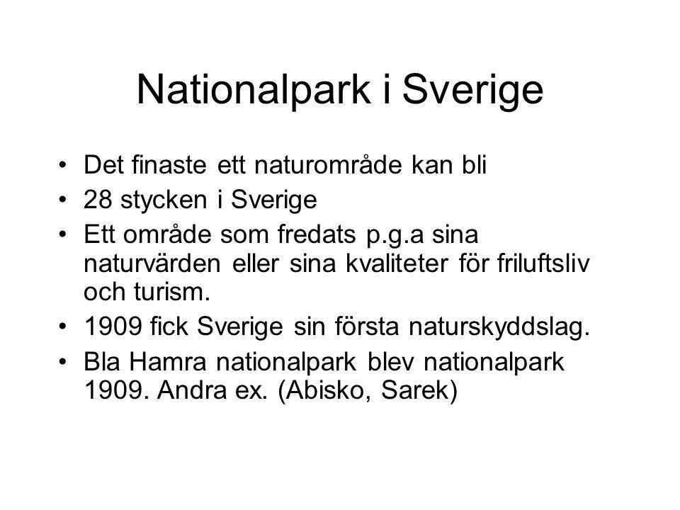 Nationalpark i Sverige Det finaste ett naturområde kan bli 28 stycken i Sverige Ett område som fredats p.g.a sina naturvärden eller sina kvaliteter fö