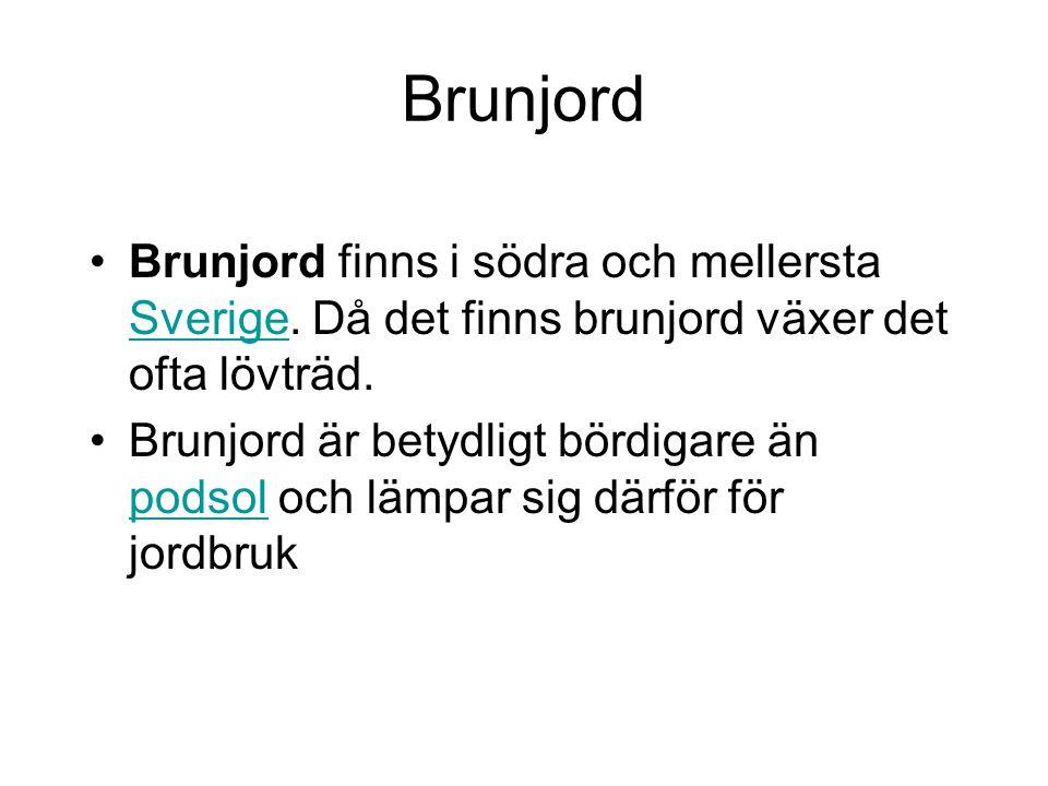 Brunjord Brunjord finns i södra och mellersta Sverige. Då det finns brunjord växer det ofta lövträd. Sverige Brunjord är betydligt bördigare än podsol