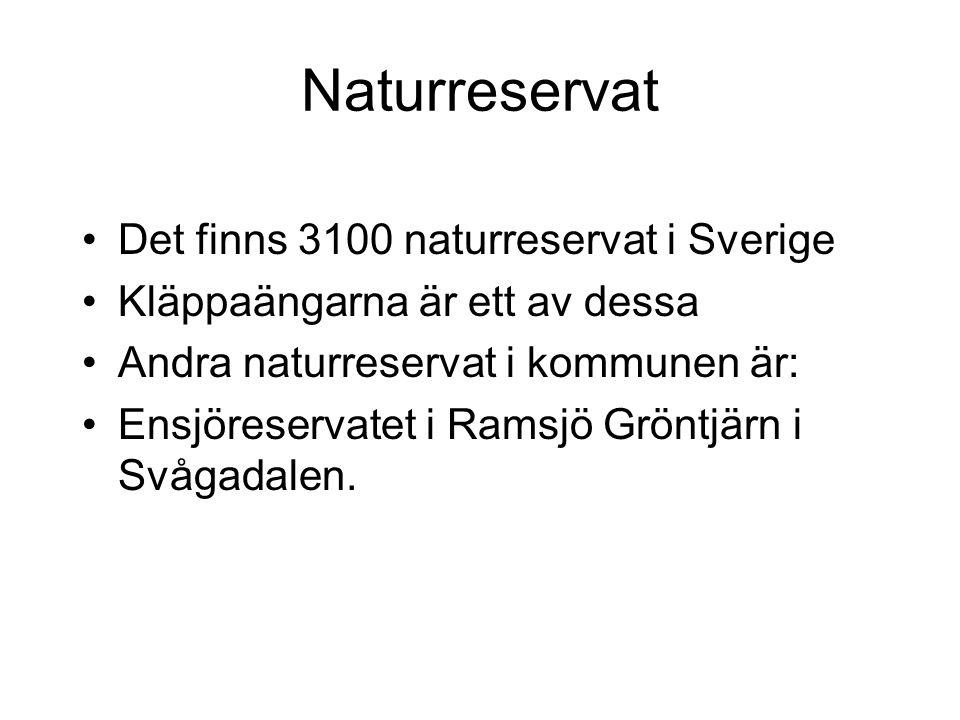 Naturreservat Det finns 3100 naturreservat i Sverige Kläppaängarna är ett av dessa Andra naturreservat i kommunen är: Ensjöreservatet i Ramsjö Gröntjä