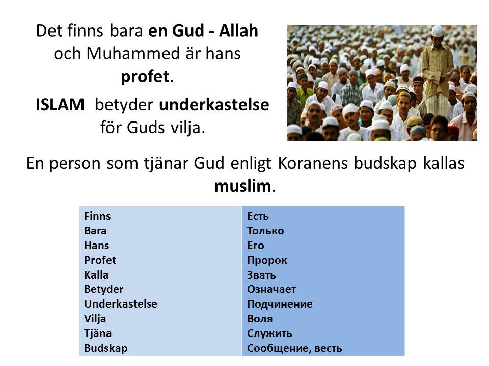 Islams fem pelare TROSBEKÄNNELSEN: Det finns ingen gud utom Allah och Muhammed är hans profet .