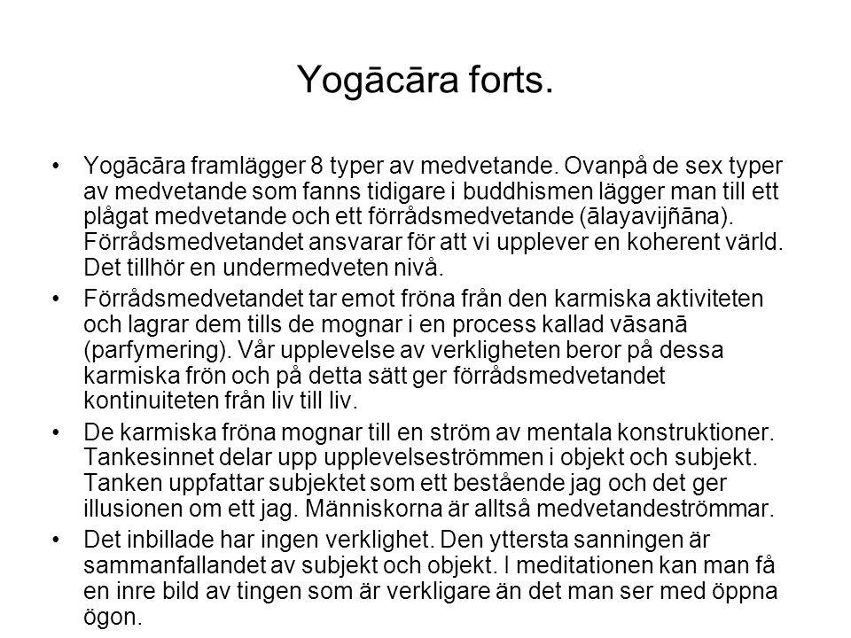 Yogācāra forts. Yogācāra framlägger 8 typer av medvetande. Ovanpå de sex typer av medvetande som fanns tidigare i buddhismen lägger man till ett plåga