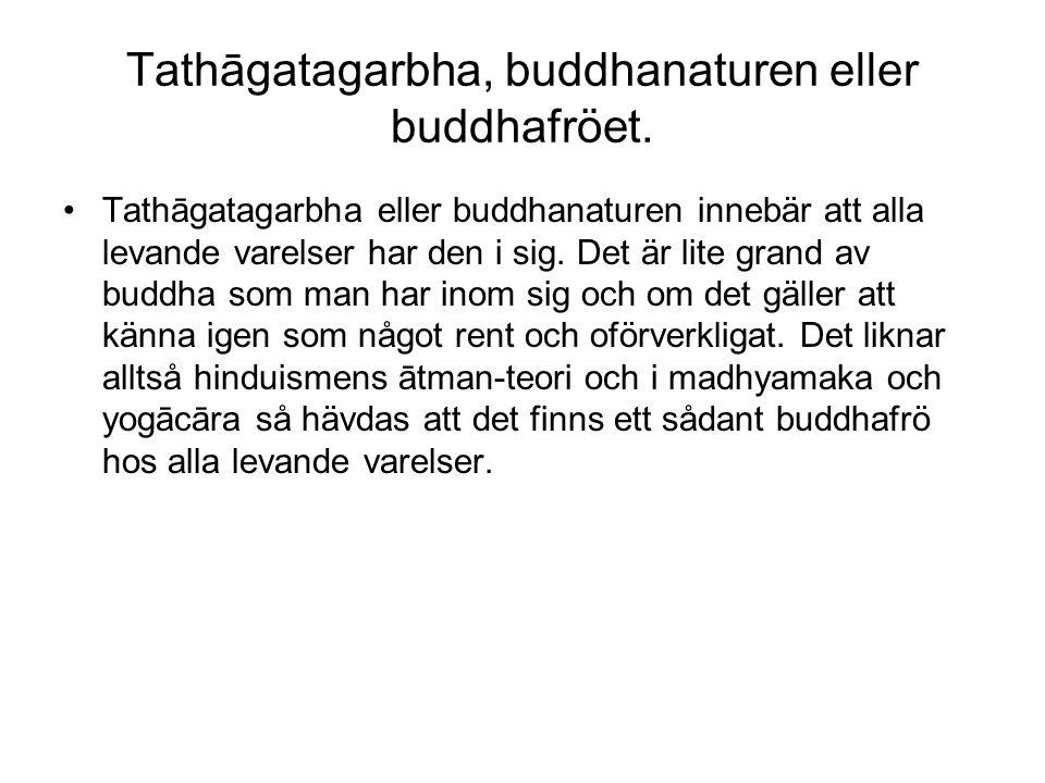 Tathāgatagarbha, buddhanaturen eller buddhafröet. Tathāgatagarbha eller buddhanaturen innebär att alla levande varelser har den i sig. Det är lite gra