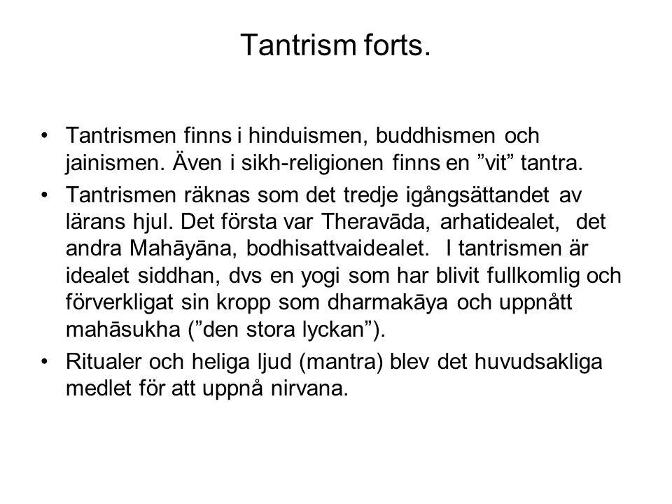 "Tantrism forts. Tantrismen finns i hinduismen, buddhismen och jainismen. Även i sikh-religionen finns en ""vit"" tantra. Tantrismen räknas som det tredj"