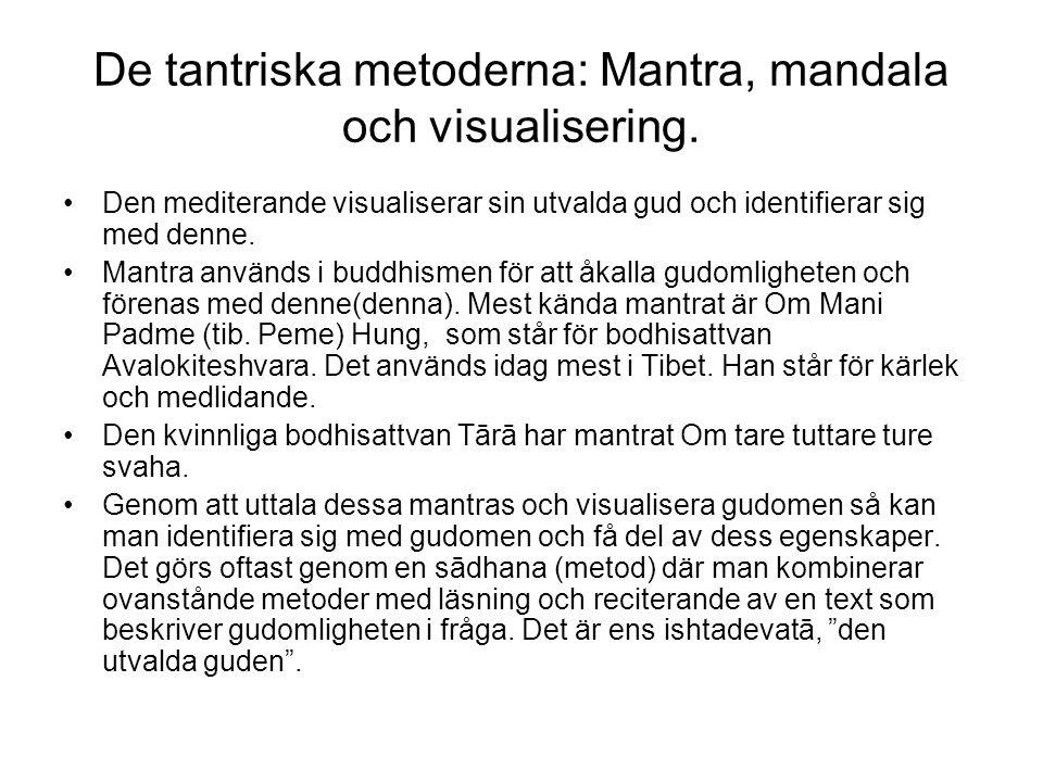 De tantriska metoderna: Mantra, mandala och visualisering. Den mediterande visualiserar sin utvalda gud och identifierar sig med denne. Mantra används