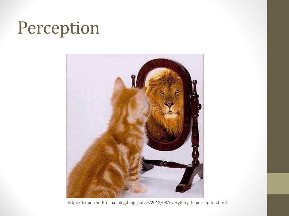 Perceptionspsykologi Upplever omvärlden med våra sinnen Tolkar sinnesupplevelse utifrån olika faktorer Ingen medveten uppfattning om alla intryck Sållning.