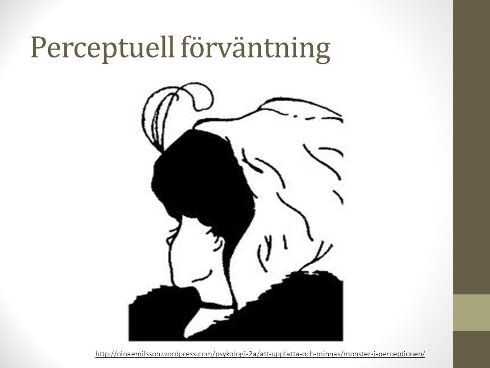Perceptuell förväntning http://www.mpocares.com/news-events/mpo-visual-illusion/document-2