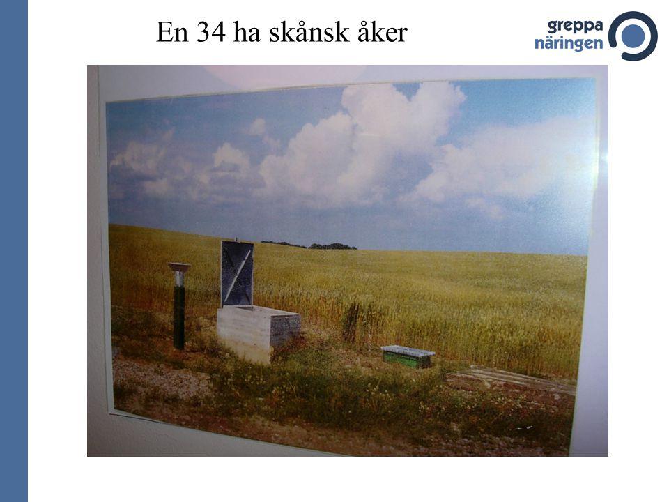 Källa: Avd. f. Vattenvård, SLU 26 års kväveutlakning på ett skifte på en växtodlingsgård i Skåne