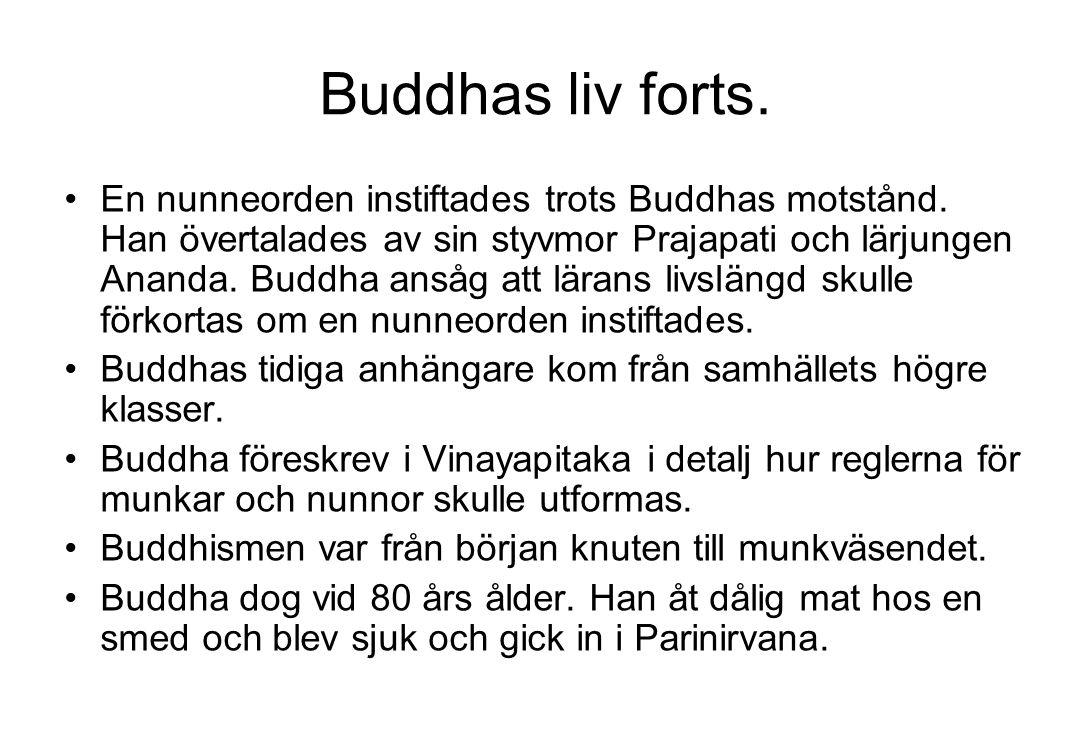 Buddhas liv forts. En nunneorden instiftades trots Buddhas motstånd. Han övertalades av sin styvmor Prajapati och lärjungen Ananda. Buddha ansåg att l