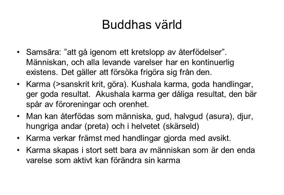 """Buddhas värld Samsāra: """"att gå igenom ett kretslopp av återfödelser"""". Människan, och alla levande varelser har en kontinuerlig existens. Det gäller at"""
