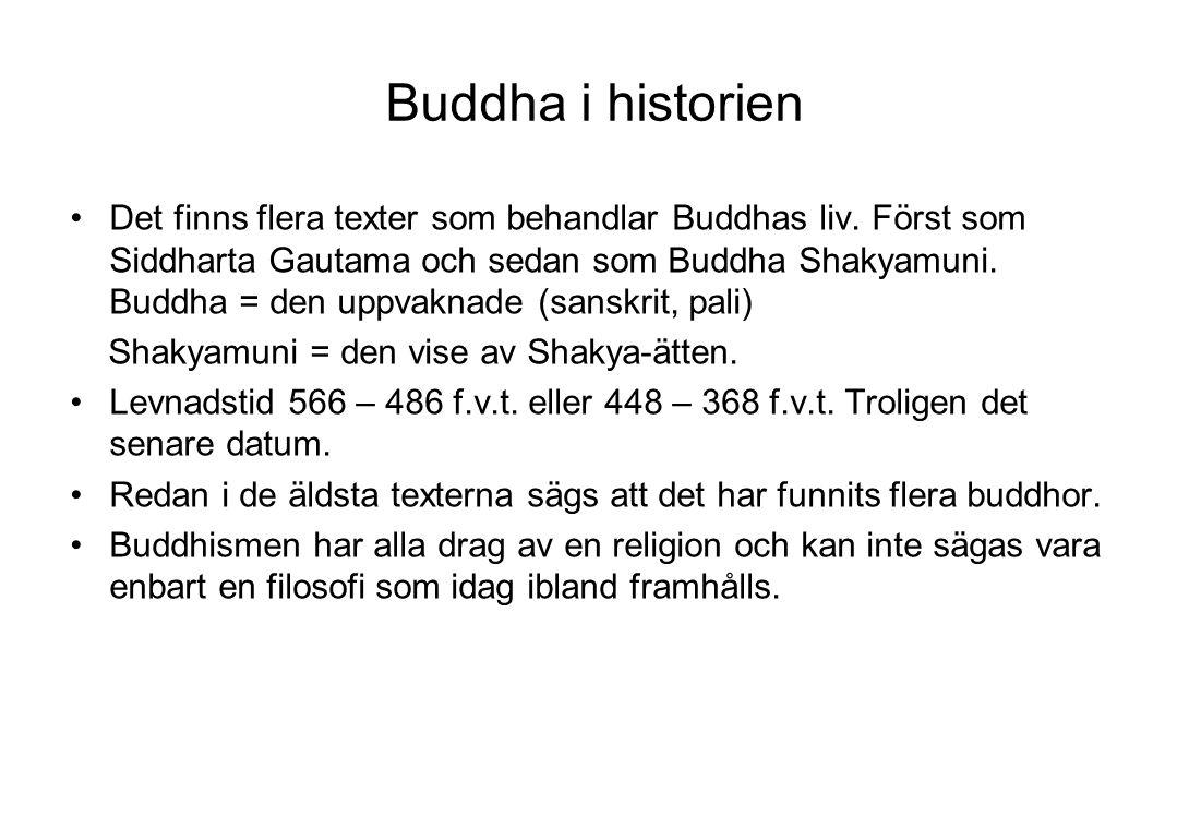 Buddha i historien Det finns flera texter som behandlar Buddhas liv. Först som Siddharta Gautama och sedan som Buddha Shakyamuni. Buddha = den uppvakn