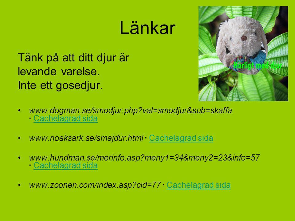 Länkar Tänk på att ditt djur är levande varelse. Inte ett gosedjur. www.dogman.se/smodjur.php?val=smodjur&sub=skaffa · Cachelagrad sidaCachelagrad sid