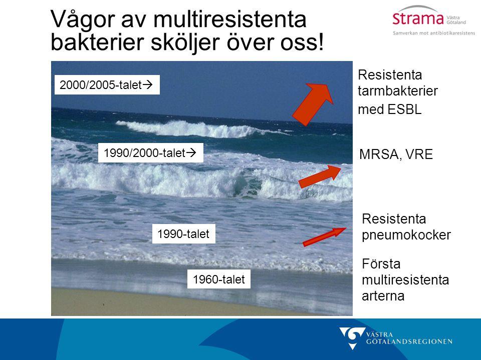 Vågor av multiresistenta bakterier sköljer över oss! Resistenta pneumokocker MRSA, VRE Resistenta tarmbakterier med ESBL Första multiresistenta artern
