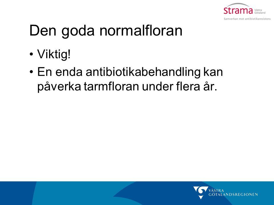 Den goda normalfloran Viktig! En enda antibiotikabehandling kan påverka tarmfloran under flera år.