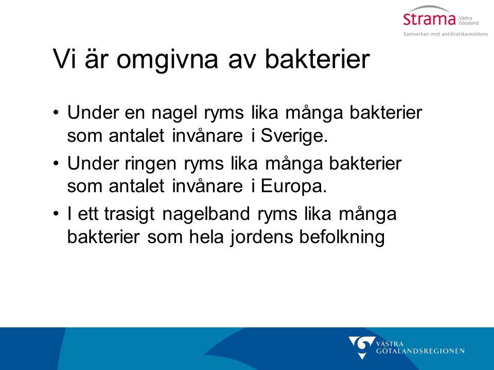 Vi är omgivna av bakterier Under en nagel ryms lika många bakterier som antalet invånare i Sverige. Under ringen ryms lika många bakterier som antalet