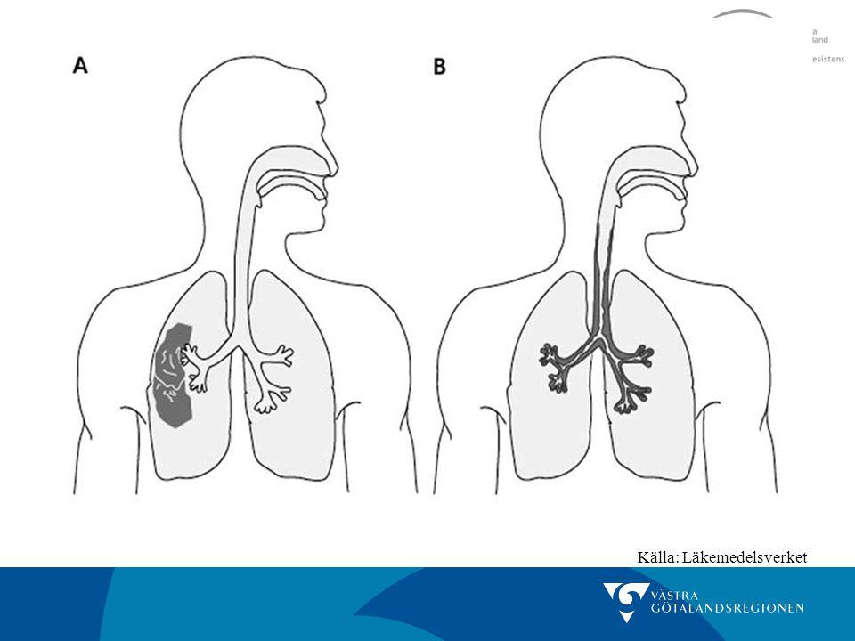 Hjälp i diagnostiken: Allmänpåverkan Andningsfrekvens Hjärtfrekvens Auskultera lungorna Temp POX och PEF CRP