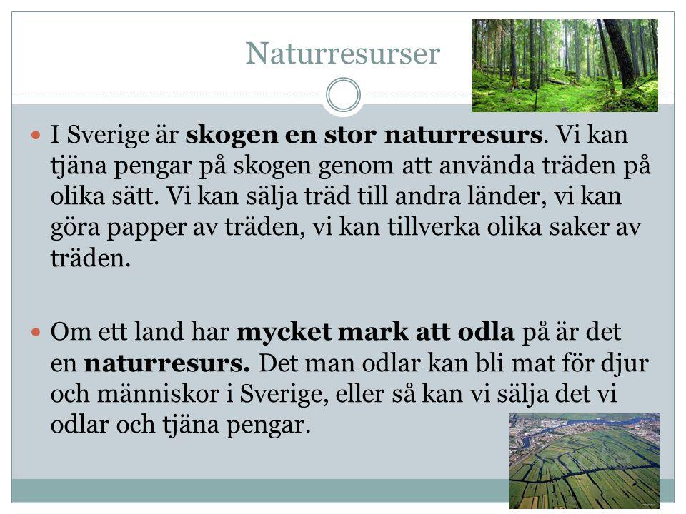 Naturresurser I Sverige är skogen en stor naturresurs. Vi kan tjäna pengar på skogen genom att använda träden på olika sätt. Vi kan sälja träd till an
