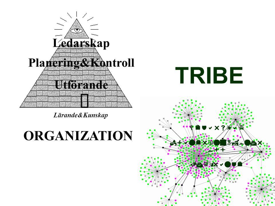 Ledarskap Planering&Kontroll Utförande Lärande&Kunskap     ORGANIZATION TRIBE