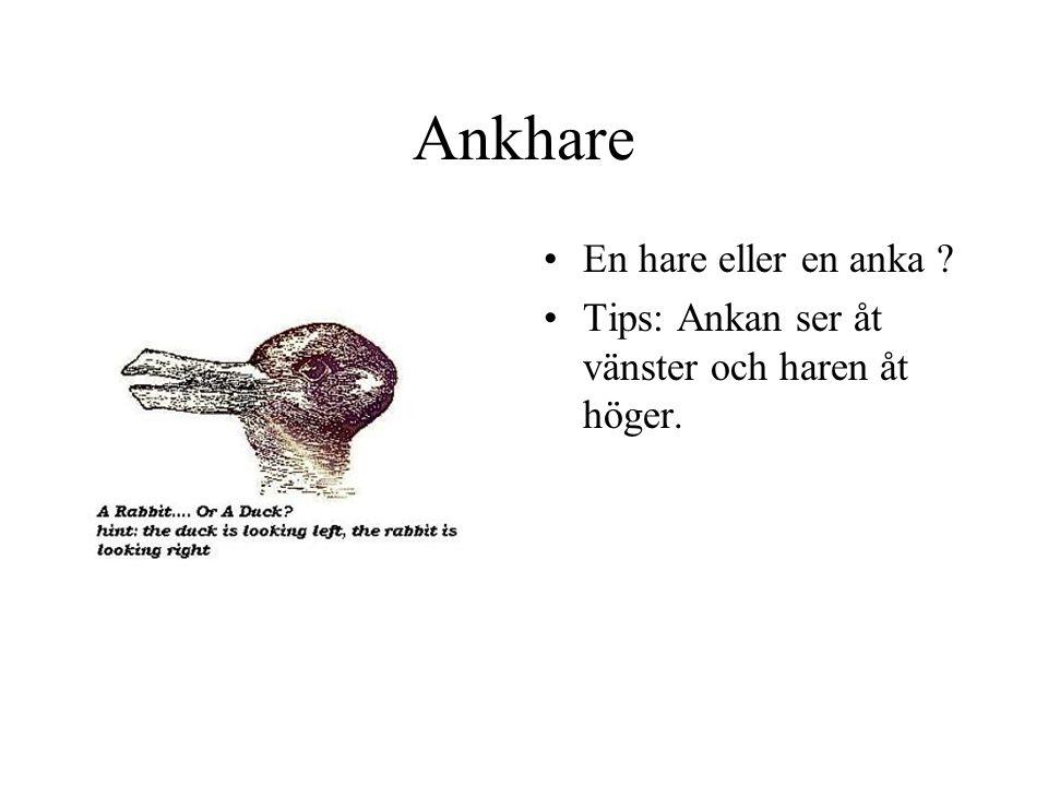 Ankhare En hare eller en anka ? Tips: Ankan ser åt vänster och haren åt höger.