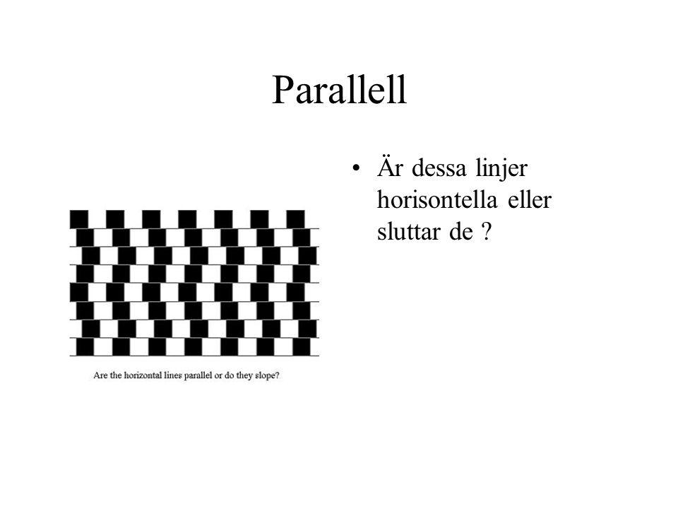 Parallell Är dessa linjer horisontella eller sluttar de ?
