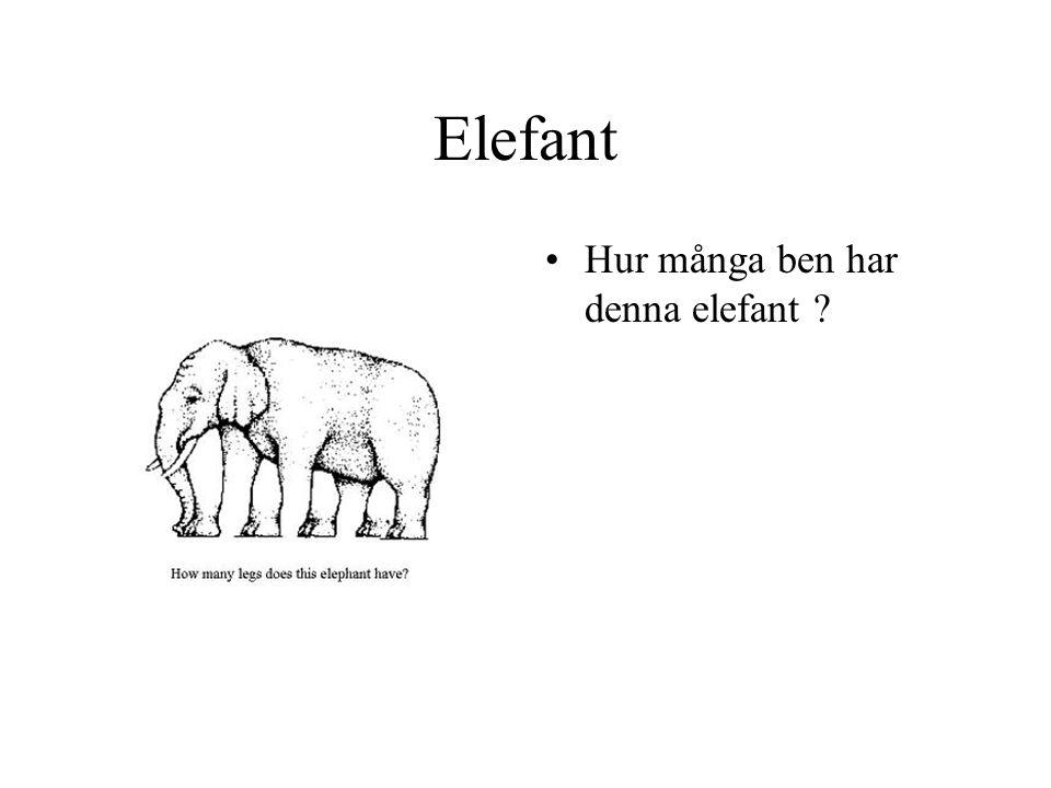 Elefant Hur många ben har denna elefant ?