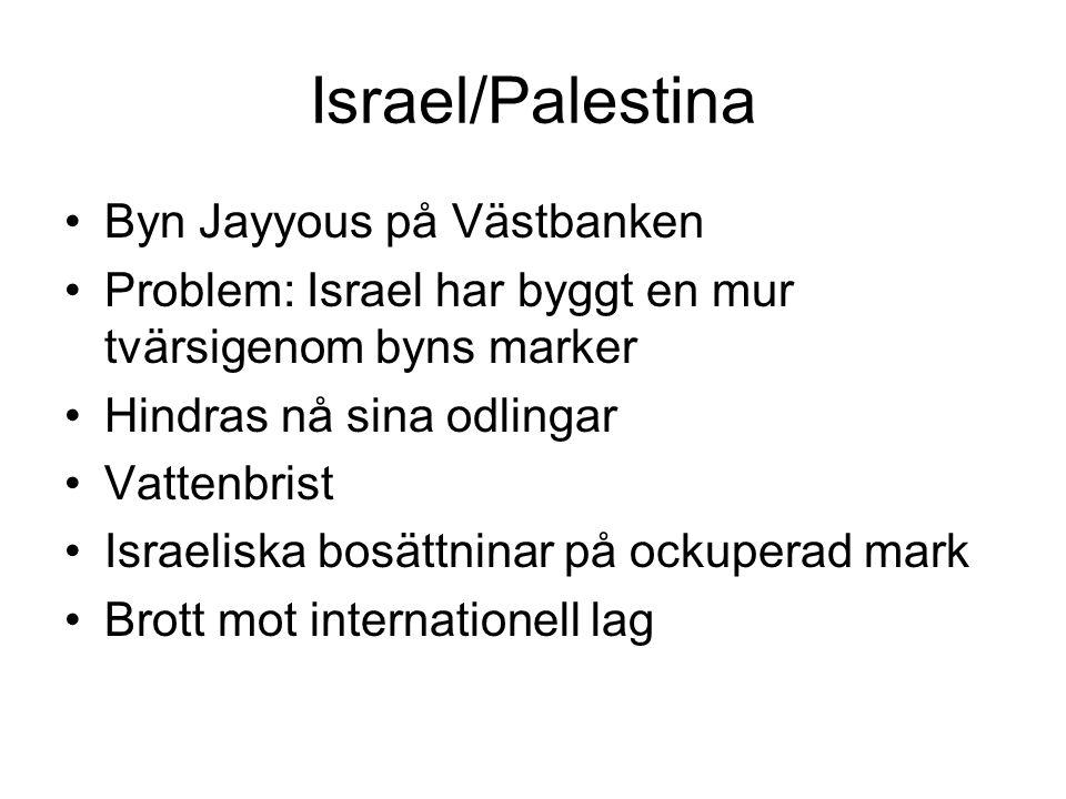 Israel/Palestina Byn Jayyous på Västbanken Problem: Israel har byggt en mur tvärsigenom byns marker Hindras nå sina odlingar Vattenbrist Israeliska bosättninar på ockuperad mark Brott mot internationell lag