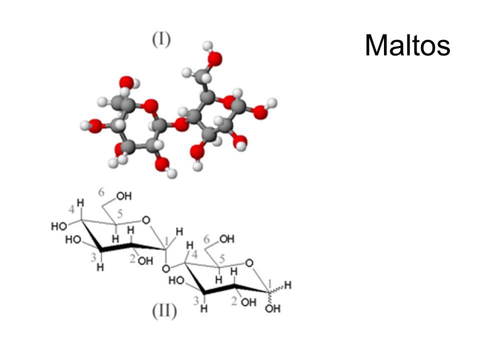 Cellobios Glykosidbindningen i cellobios är en B-1,4- glykosidbindning.