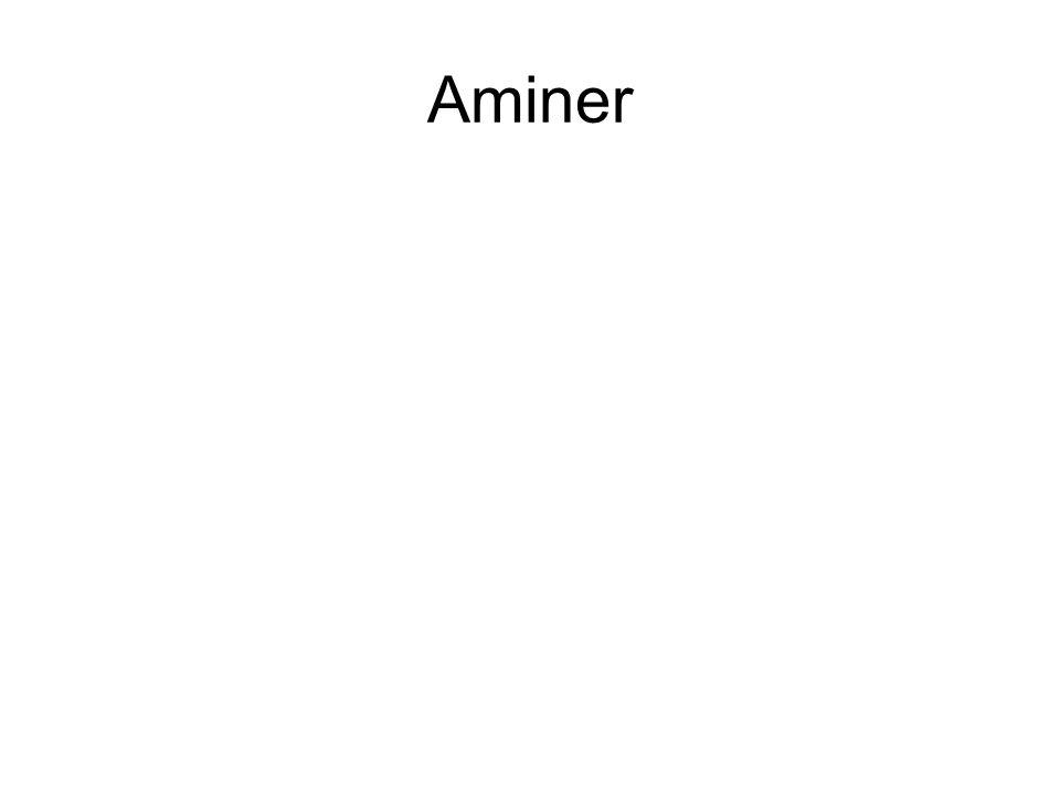 Aminer