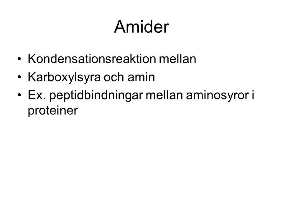 Amider Kondensationsreaktion mellan Karboxylsyra och amin Ex. peptidbindningar mellan aminosyror i proteiner