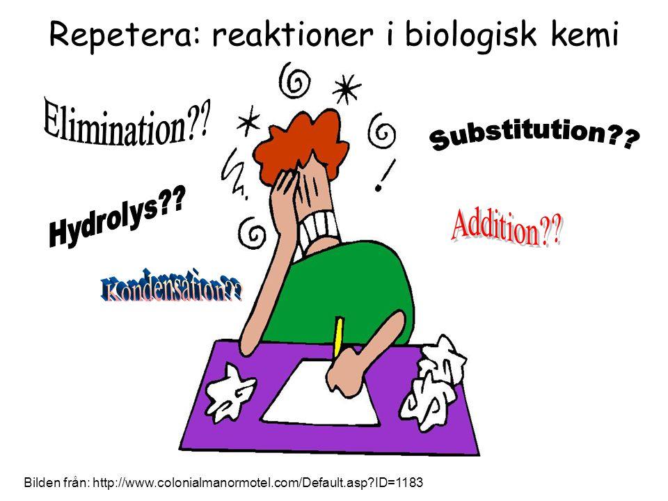 Bilden från: http://www.colonialmanormotel.com/Default.asp?ID=1183 Repetera: reaktioner i biologisk kemi
