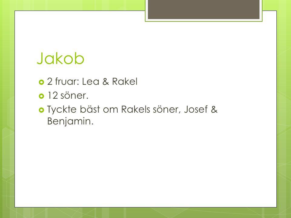 Jakob  2 fruar: Lea & Rakel  12 söner.  Tyckte bäst om Rakels söner, Josef & Benjamin.