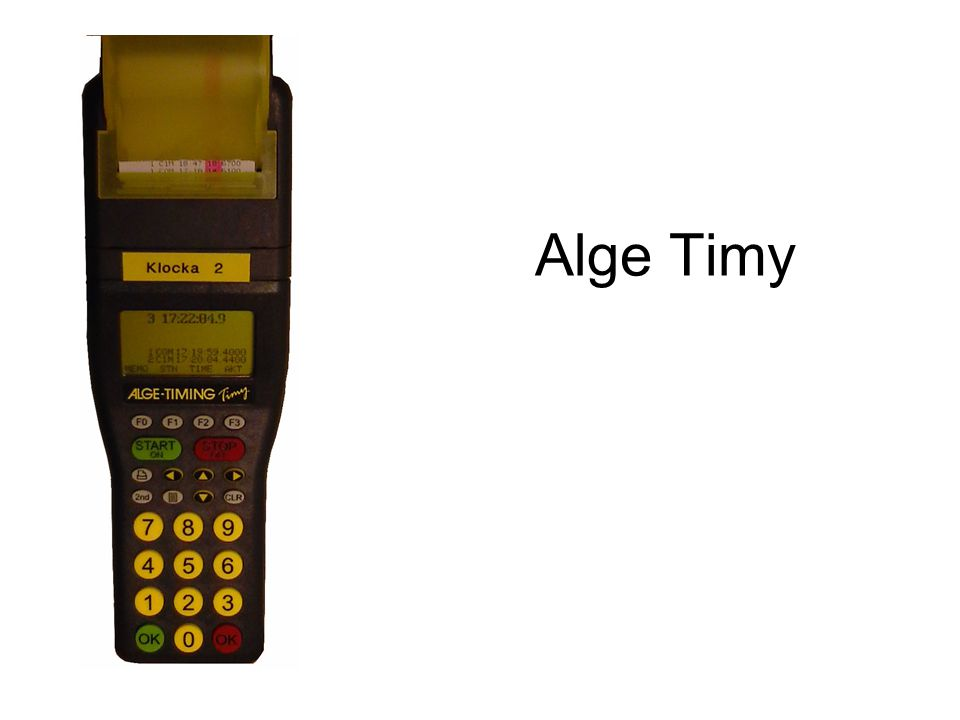 Alge Timy